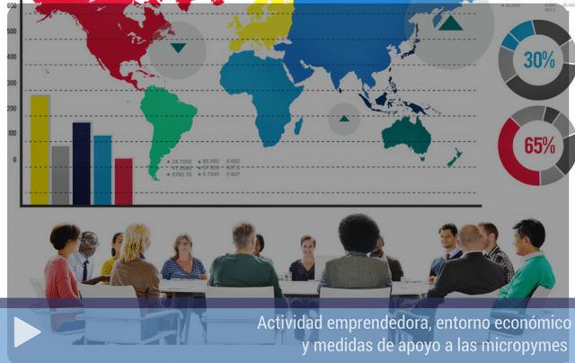 Actividad emprendedora, entorno económico y medidas de apoyo a las micropymes