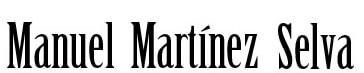 logo_manuelmartinezselva