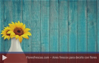 Floresfrescas - Experiencias emprendedores