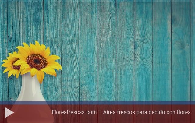 Floresfrescas.com – Aires frescos para decirlo con flores