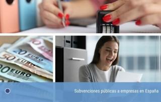 Subvenciones públicas a empresas en España