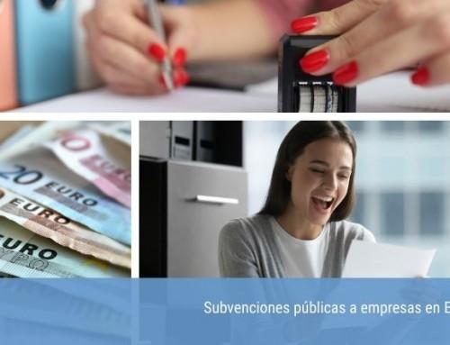 Buscador de subvenciones públicas a empresas en España