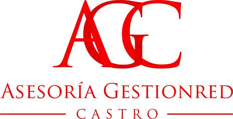 Asesoría-Gestionred-Castro-2